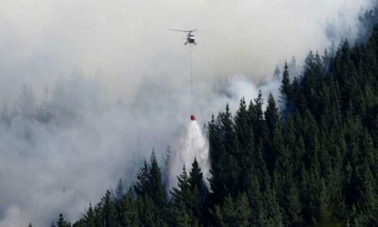 Ужасающая зрелищность: в новейшей Зеландии пламенеют леса